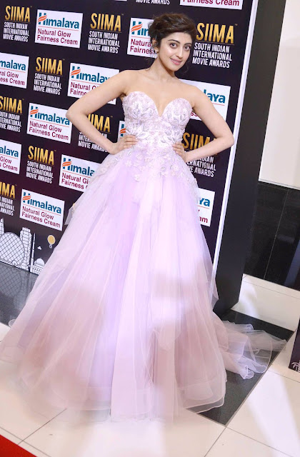 Pranitha Subhash on the red carpet at SIIMA Awards 2017 Day 1