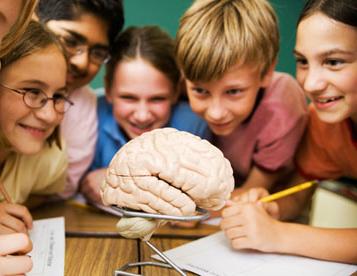 Fler barn utreds i skolorna
