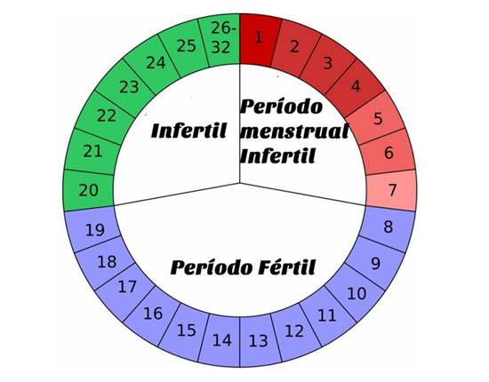 periodo fertil ciclo irregular