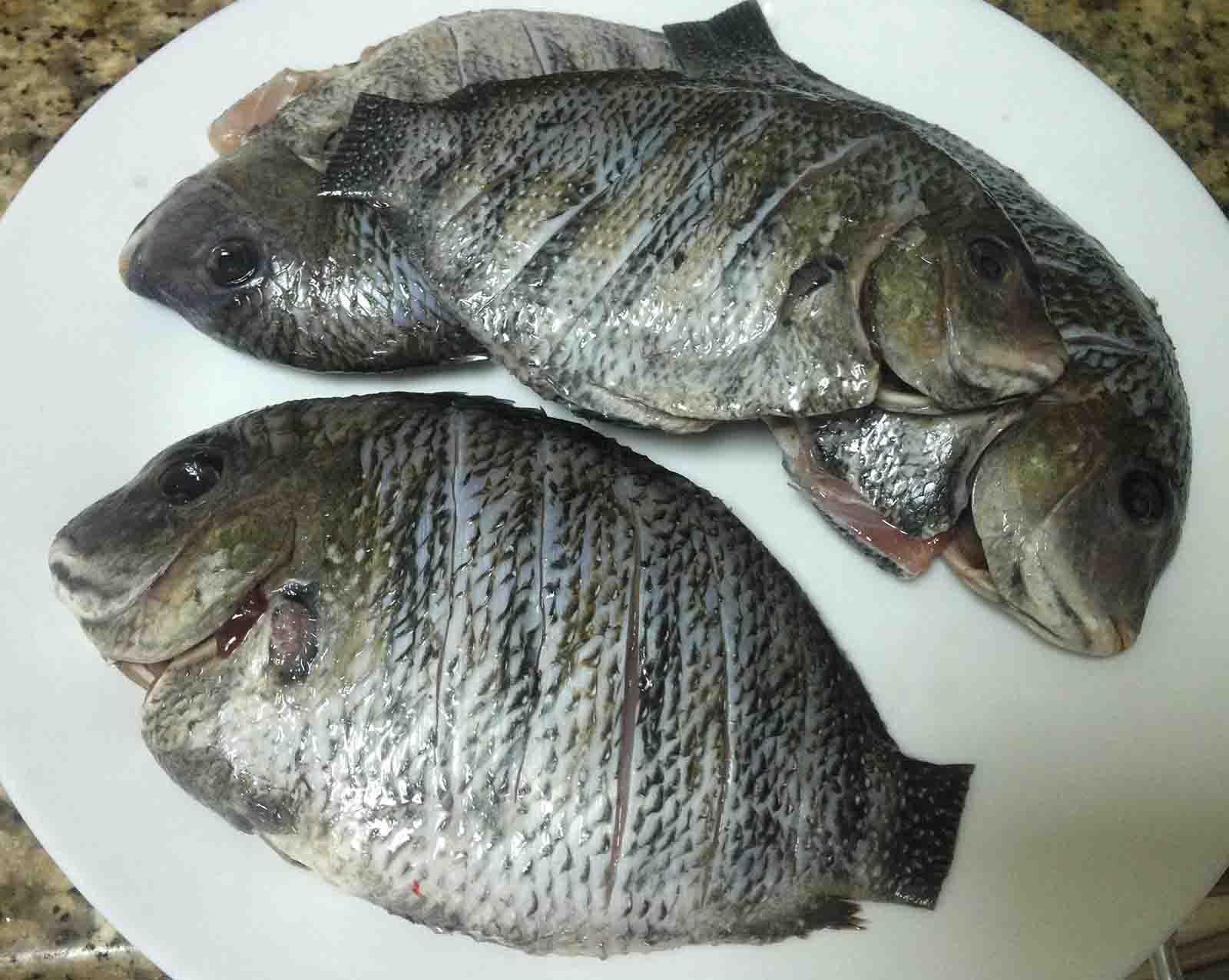Fry Fish Recipe Pearl Spot Karimeen Fish Fry