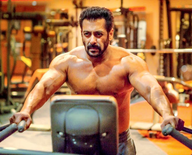 Tiger Is Back Salman Khan Hd Pictures