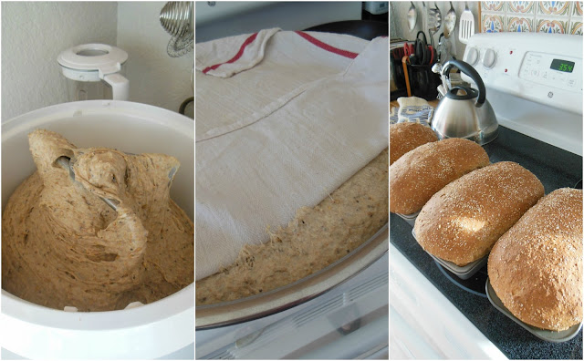Bread served at Our Sunday Cafe. Mostly organic, whole grain cooking and baking.