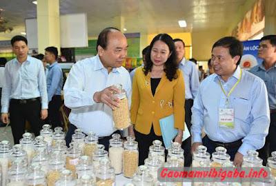 thủ tướng nguyễn xuân phúc nói gì về gạo lứt nảy mầm tẩm tỏi đen vibigaba