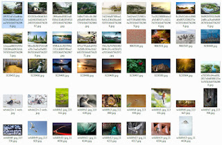 الطبيعة الخلابة صور للتحميل Picturesque nature images for download
