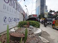 Pohon Mahoni di Depan Podomoro City Ditebang, Laporkan ke Polisi