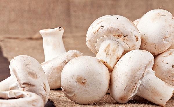 7 Manfaat Konsumsi Jamur Bagi Kesehatan Tubuh