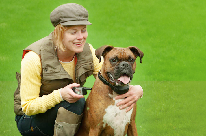 Waterproof Dog Training Collars