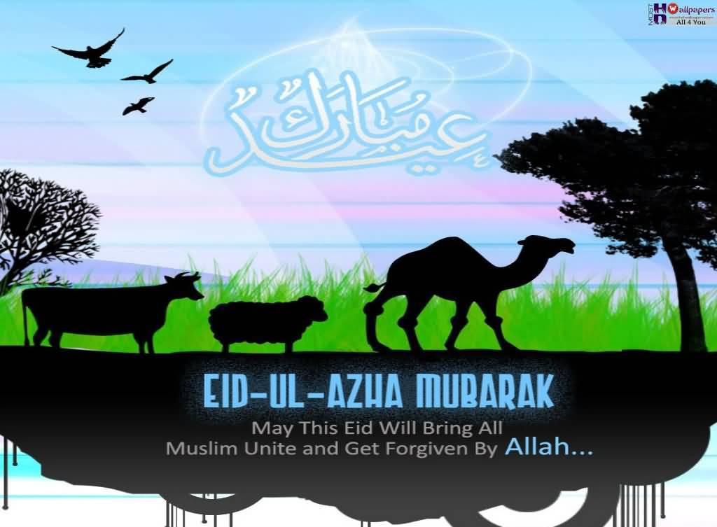 Eid ul Adha Wishes 2017