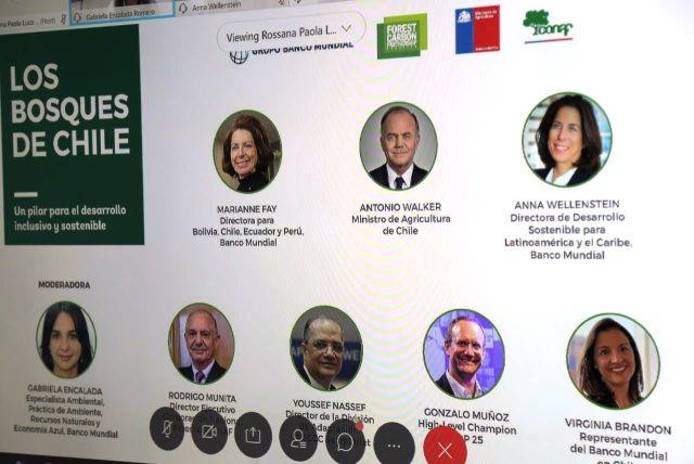 Seminario internacional destaca rol de los bosques para una reactivación sostenible