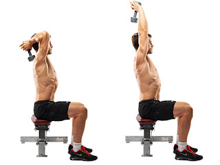 Best Exercise For Biceps