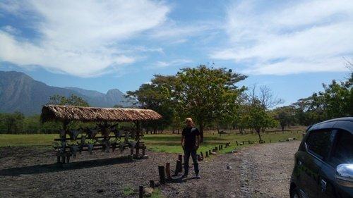 Wisata-Padang-Rumput-Baluran