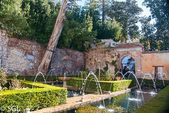Jardín del cipres de la leyenda de la sultana y el caballero Abencerraje. Alhambra de Granada