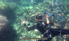 snorkeling menyaksikan keindahan destinasi wisata pulau tidung