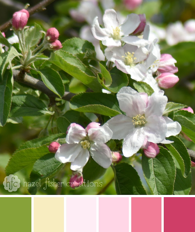 Colour Palette Inspiration - apple blossom by hazel fisher creations