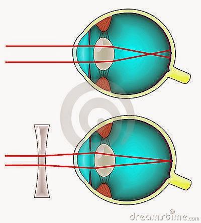 Easy Eye Diagram Human Eye Diagram Pdf Wiring Diagrams • Techwomen Co