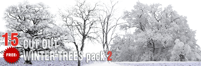 free winter trees PNG pack 2