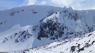 Cairngorms in May