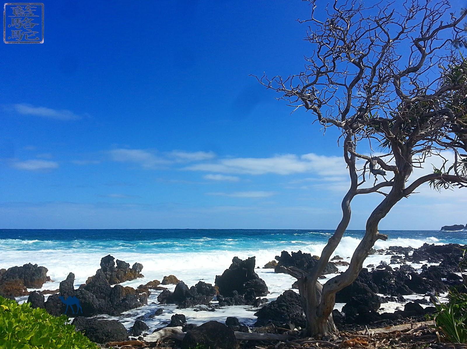 Le Chameau Bleu - Instantanés hawaïens - plage d'hawaii