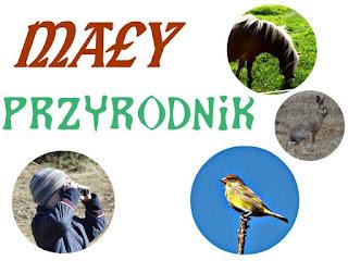 http://www.kreatywnymokiem.pl/p/may-przyrodnik.html