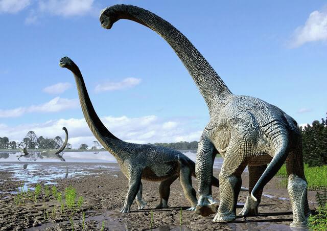 اكتشاف عظام نوع جديدة من الديناصورات في ولاية كوينزلاند