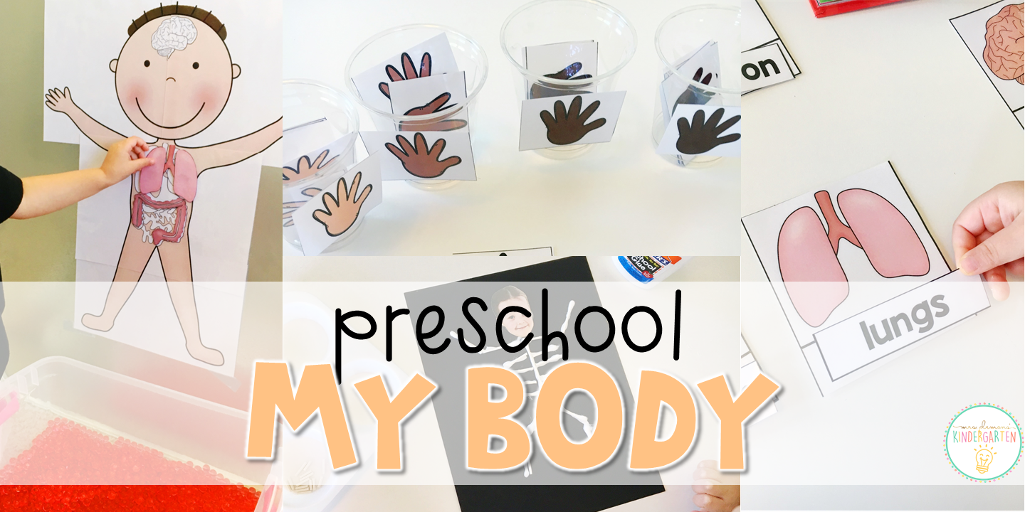 Preschool My Body Mrs Plemons Kindergarten