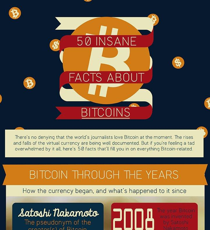 Bitcoin Facts Infographic
