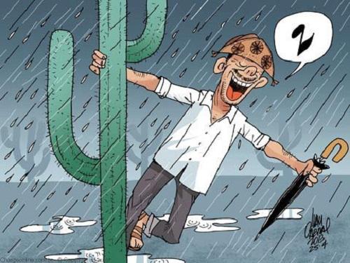 Resultado de imagem para chuva no pajeu