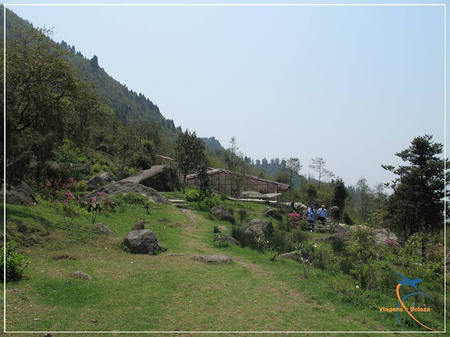 Plant Conservatory Bulbuley em Sikkim