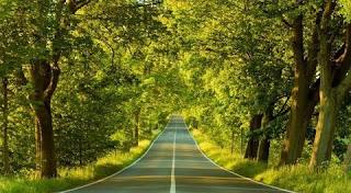 تفسير رؤية الطريق في المنام بالتفصيل
