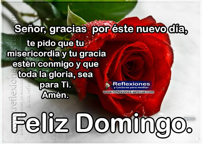 Feliz domingo, Señor, gracias por éste nuevo día, te pido que tu misericordia y tu gracia estén conmigo y que toda las gloria, sea para Ti. amén