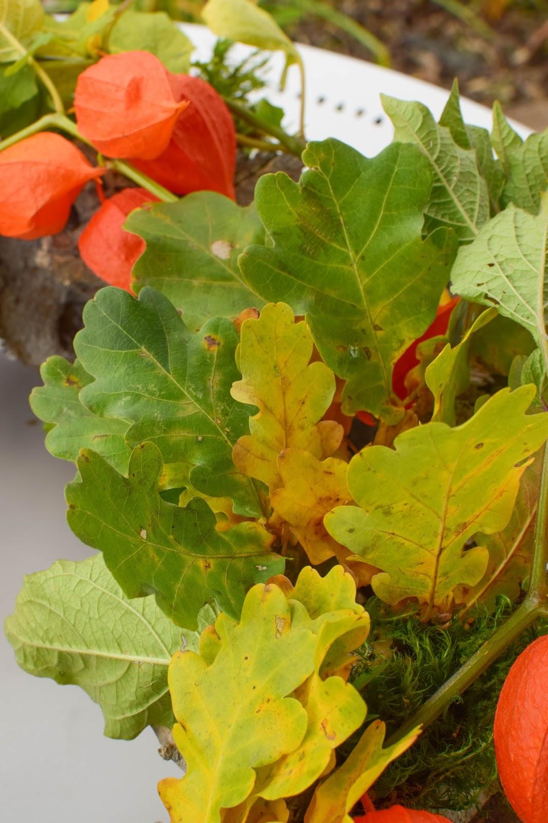 3 Ideen für DIY Kränze für den Herbst: selbermachen Holzkranz Naturdeko Lampionblume Moos Eichenlaub