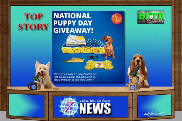 BFTB NETWoof News top story is National Puppy Day Giveaway from PrideBites