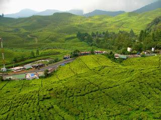Wisata Puncak di Kota Bogor