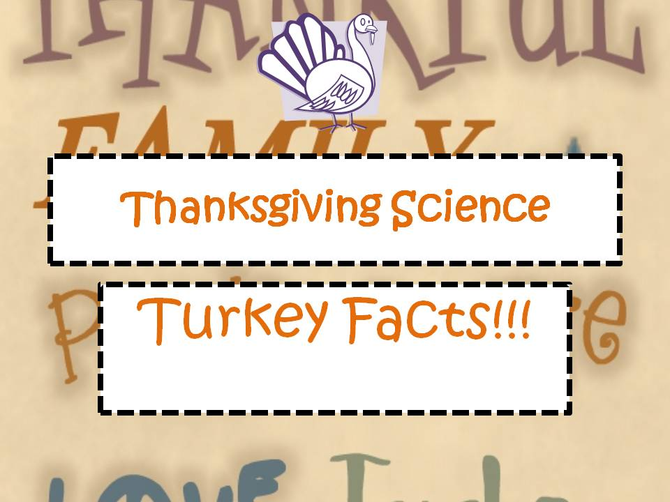 Engaging Lessons And Activities: Free Thankgiving and Fall ...