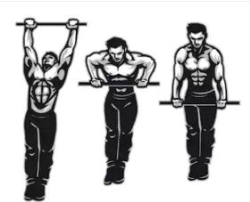 plyo exercises