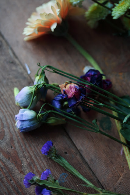 valokuvaus, kukkia, still life flowers