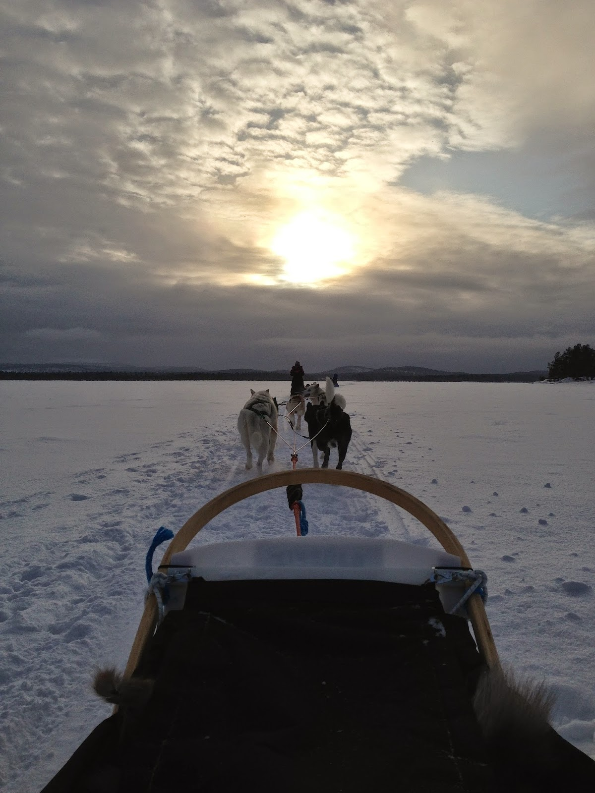 Husky Sled on Lake Inari, Finland