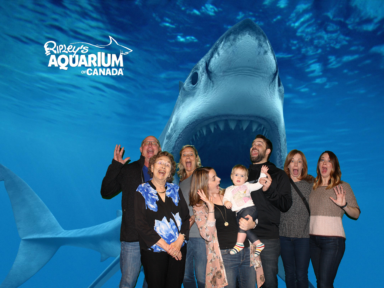 Celebrating Morley's 1st Birthday at Ripley's Aquarium of Canada