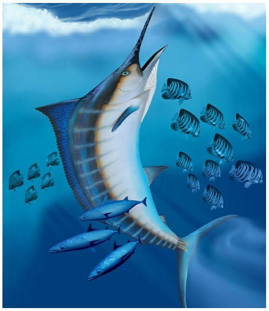 osmoregulation in freshwater fish pdf