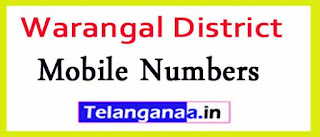 Cheriyal Mandal Sarpanch Upa-Sarpanch Mobile Nembers List Warangal District in Telangana