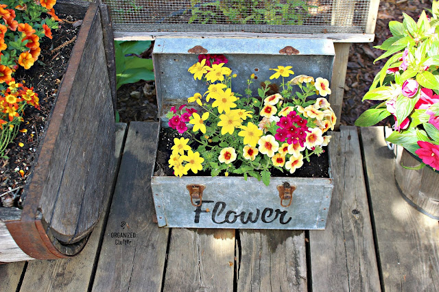 A Perfect Mix for a Favorite Galvanized Tool Box
