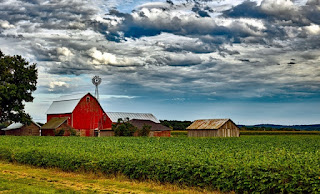 farm-with red and smaller gray barns, crops, windmill, trees, and blue sky/white clouds above