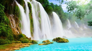 SECRETS OF NATURE IN HEALTH AND YOUR LIFE AND WALLPAPER FOR YOU DESKTOP