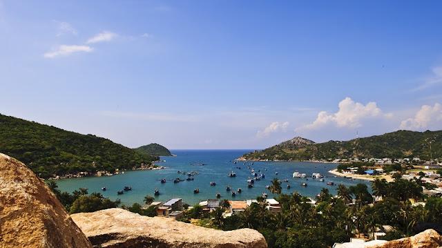 Kingdom of coral lies beneath Vinh Hy Bay 8