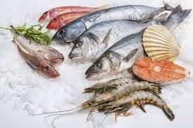 Hati-Hati – Ikan Laut Indonesia Sudah Tidak Aman ? Tips Memilih Sea Food