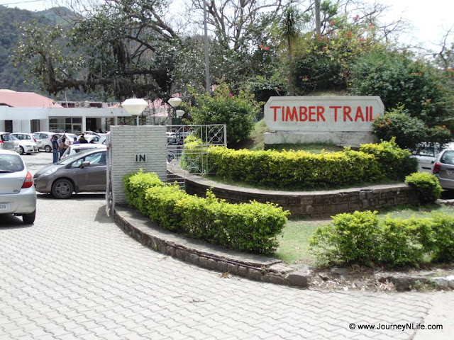 Timber Trail a beautiful resort in Parwanoo, Himachal Pradesh