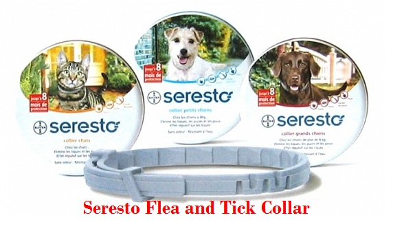 Seresto Flea and Tick Collar