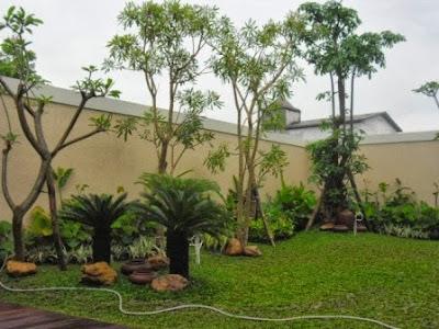 TUKANG TAMAN JAKARTA - MODERN MINIMALIS