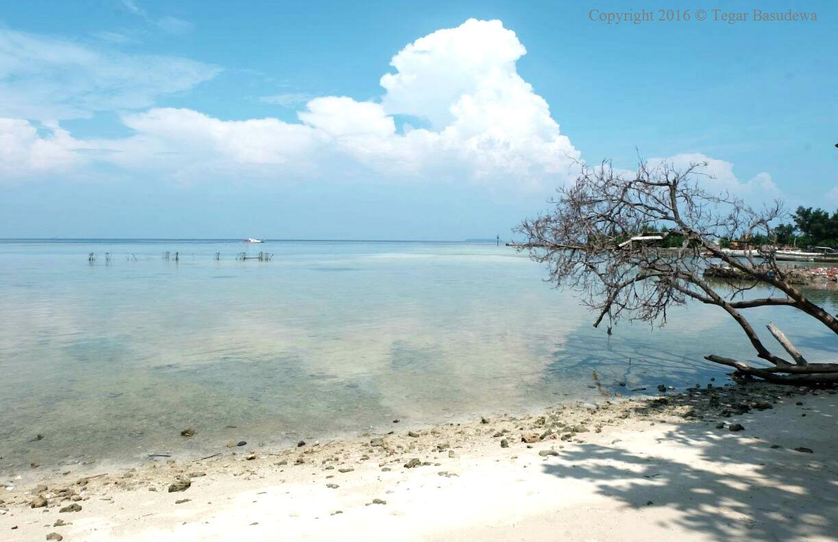 liburan-kilat-ala-pulau-pari-kepulauan-seribu