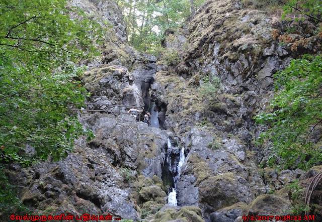 Washington Hardy and Rodney Falls Hike